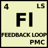 Fl : Feedback Loop